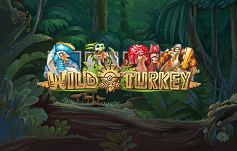 Онлайн игра birds of a feather slots