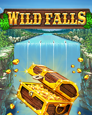 [game.playnGoWildFalls.v.logo]