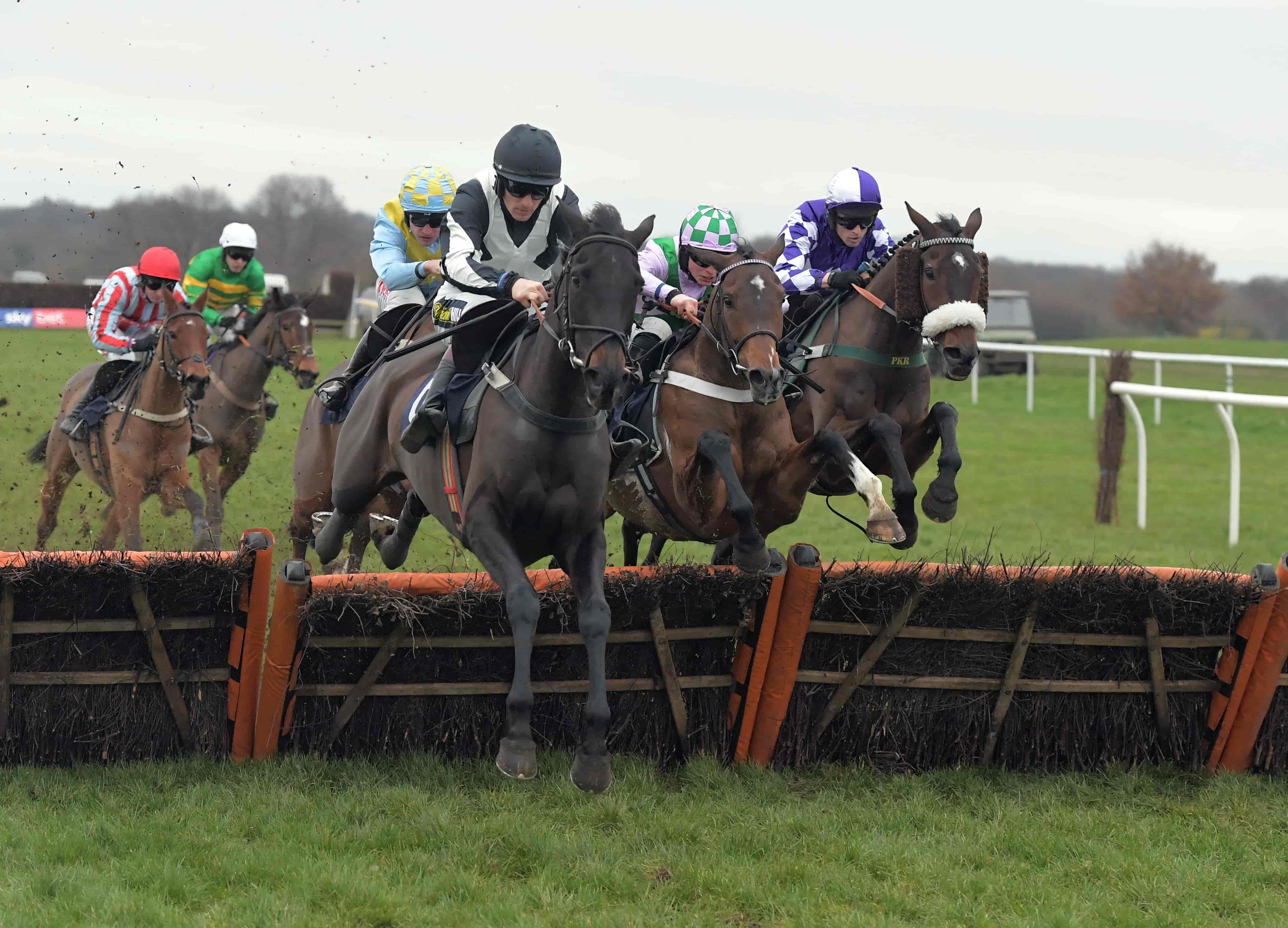 Betsafe Horse Racing