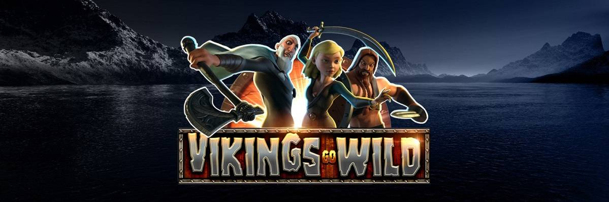 Play Wild Viking by Playtech