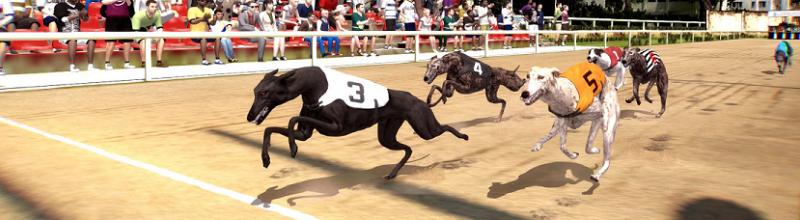 How To Play Virtual Hound Racing