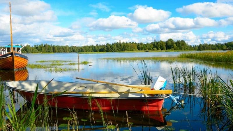 Sverige just nu vinter host och sommar samtidigt