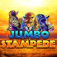 Bet on Sportsbook, Live Casino, Poker & Bingo Games Online !